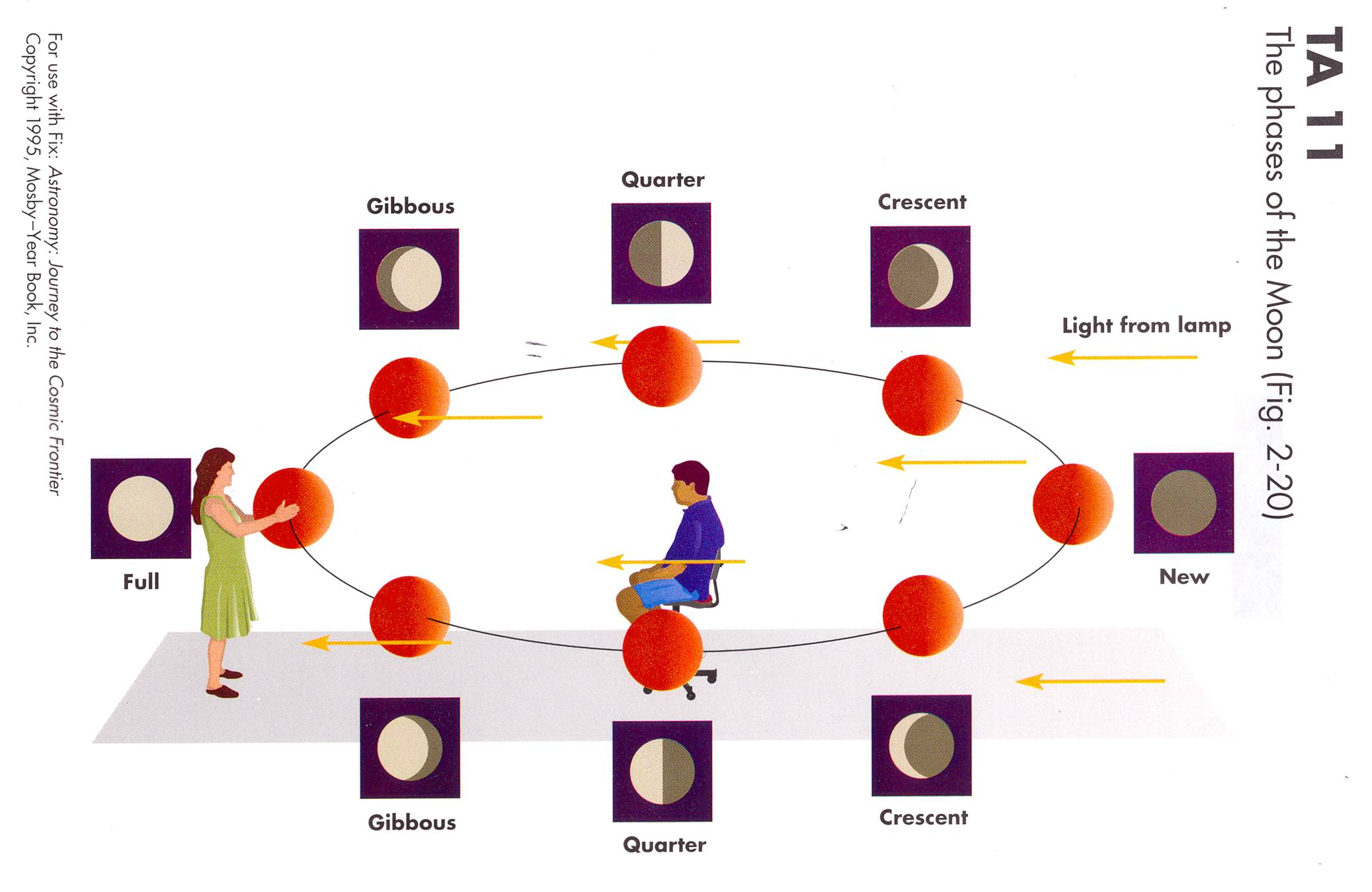 Oklahoma Space Stuff Lunar Phases Diagram In A Room