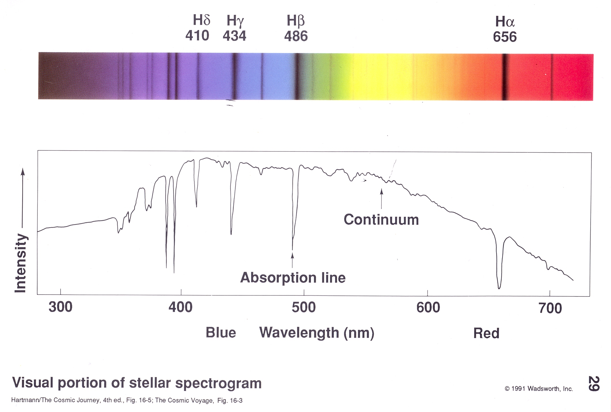 Oklahoma space stuff spectrum and graph of spectrum of a star the pooptronica Choice Image